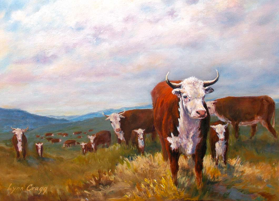 2012-Herefords