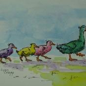 Ducks in a Row, (ID#215) 5x7 Ink & Watercolour