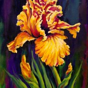 Iris, (ID#305) 16 x 20 Oil on canvas