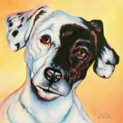 Dalmatian (after Mandy Bing), (ID#204) 12 x 12 Acrylic on gallery canvas.